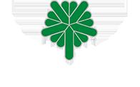 Cedar Rapids Logo